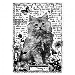 Stempel Kitten Amongst Flowers
