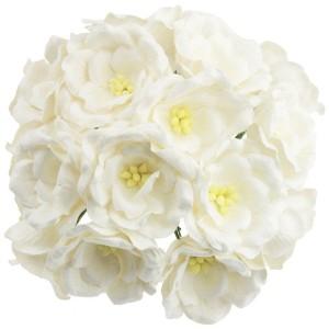 Kwiaty Magnolia White 10szt.