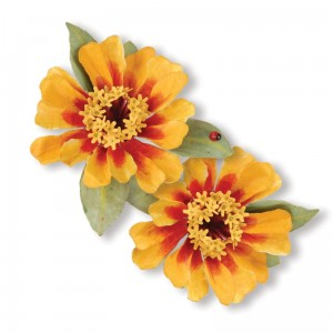 "Wykrojnik  Thinlits ""Flower Zinnia"""
